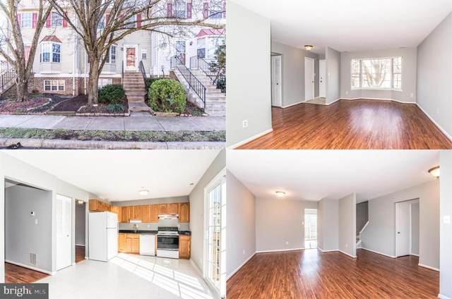 4129 Pleasant Meadow Court 91B, CHANTILLY, VA 20151 (#VAFX1176636) :: Jacobs & Co. Real Estate
