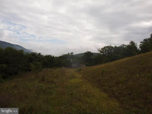 00 Rt 2/Lower Timber Ridge Rd, RIVERTON, WV 26814 (#WVPT101628) :: The Redux Group