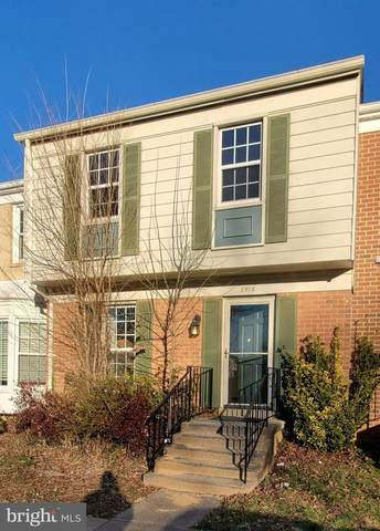 2910 Cashel Lane, VIENNA, VA 22181 (#VAFX1176664) :: Advon Group