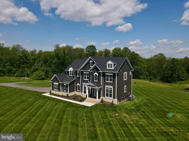19122 Bridle Branch Lane, PURCELLVILLE, VA 20132 (#VALO429210) :: AJ Team Realty