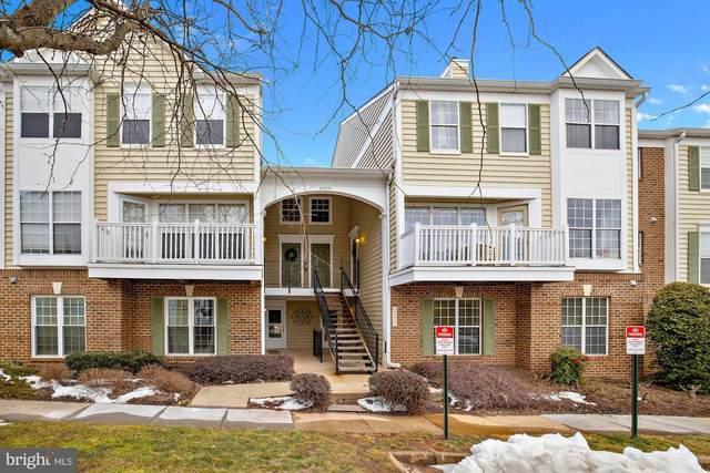 46876 Clarion Terrace #101, STERLING, VA 20164 (#VALO429216) :: Colgan Real Estate