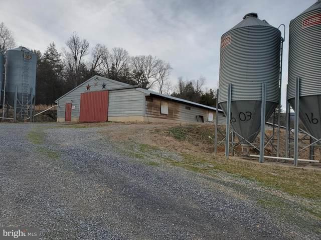 18229 Runions Creek Road, BROADWAY, VA 22815 (#VARO101464) :: Bruce & Tanya and Associates