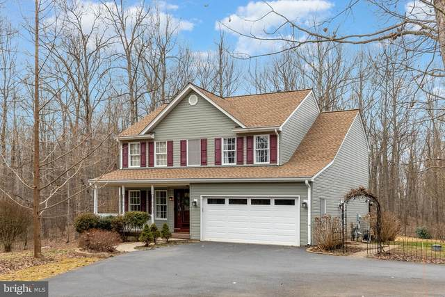 2180 Austin Lane, AMISSVILLE, VA 20106 (#VACU143440) :: The Piano Home Group