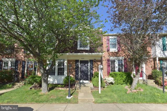 6008 Sweet Pea Court, ALEXANDRIA, VA 22310 (#VAFX1176820) :: Major Key Realty LLC