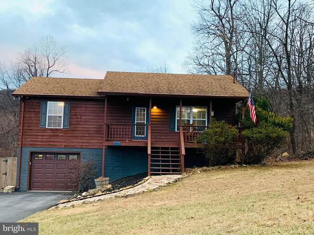 308 Blue Valley Road, LINDEN, VA 22642 (#VAWR142458) :: Dart Homes