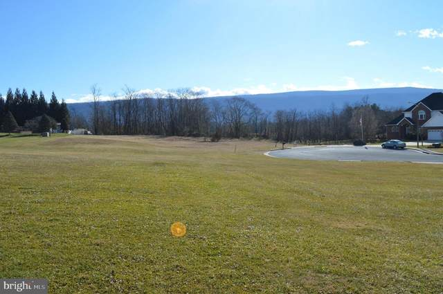Lot 1 Jefferson Street, WOODSTOCK, VA 22664 (#VASH121314) :: Talbot Greenya Group