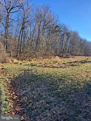 Forest Hill Drive, ELLICOTT CITY, MD 21043 (#MDHW289740) :: New Home Team of Maryland