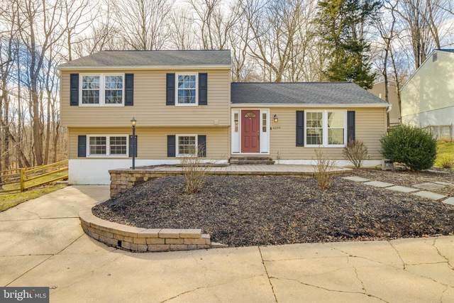 6299 Leafy Screen, COLUMBIA, MD 21045 (#MDHW289756) :: Corner House Realty