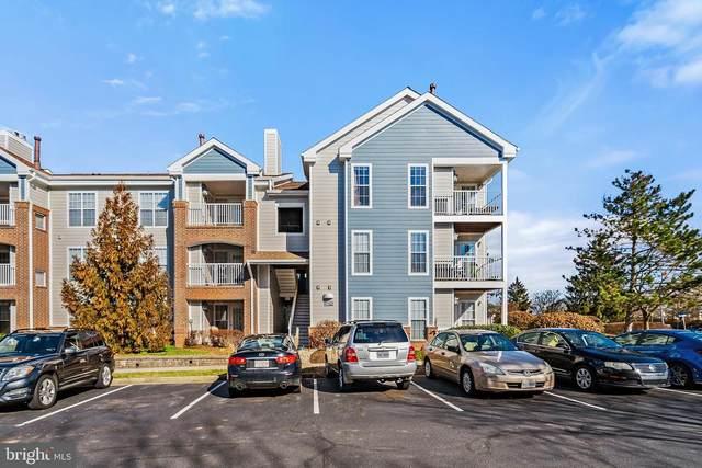 20979 Timber Ridge Terrace #301, ASHBURN, VA 20147 (#VALO429272) :: Bic DeCaro & Associates