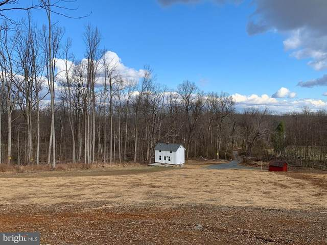 13473 Mountain Road, LOVETTSVILLE, VA 20180 (#VALO429310) :: Peter Knapp Realty Group