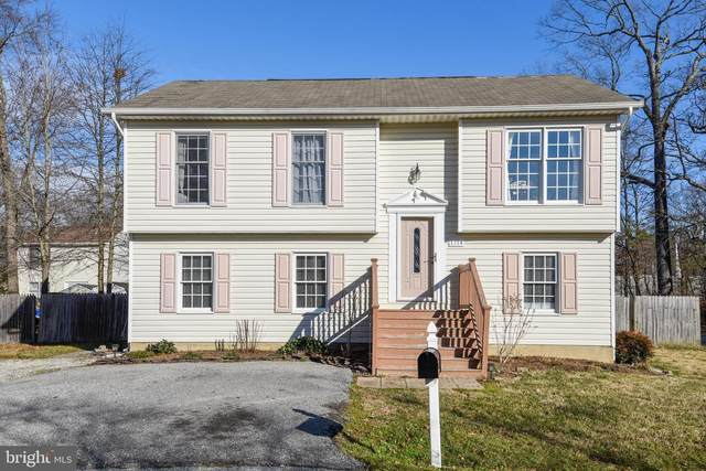 1314 Maple Street, SHADY SIDE, MD 20764 (#MDAA457346) :: Jim Bass Group of Real Estate Teams, LLC