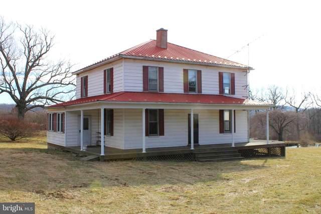 3346 Elk Garden Hwy, ELK GARDEN, WV 26717 (#WVMI111686) :: The Yellow Door Team