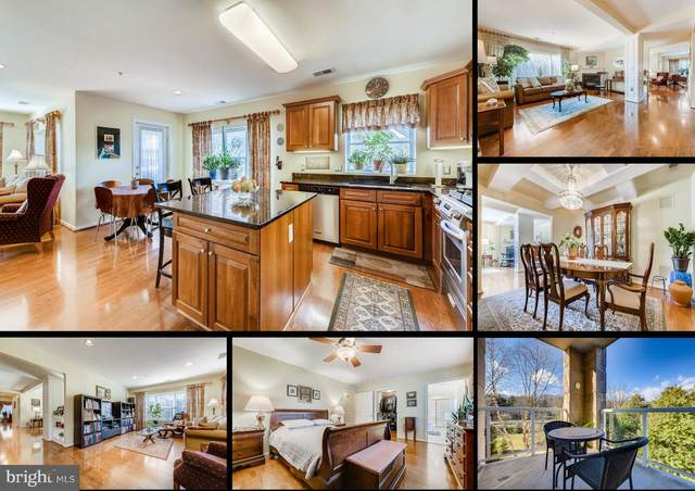 12246 Roundwood Road #203, LUTHERVILLE TIMONIUM, MD 21093 (#MDBC518084) :: New Home Team of Maryland