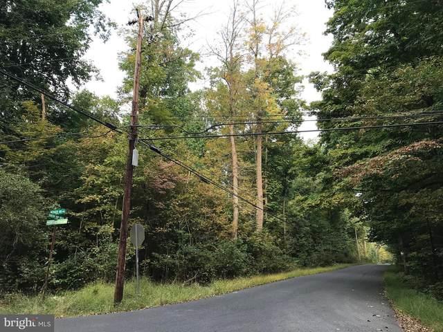 Lot 1 Catch Basin Road, SELLERSVILLE, PA 18960 (#PABU519264) :: Bob Lucido Team of Keller Williams Integrity