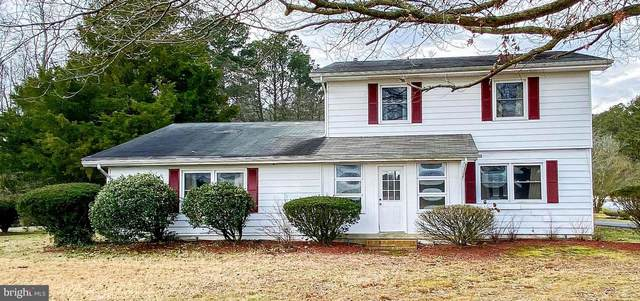 32113 Perryhawkin Road, PRINCESS ANNE, MD 21853 (#MDSO104322) :: RE/MAX Advantage Realty