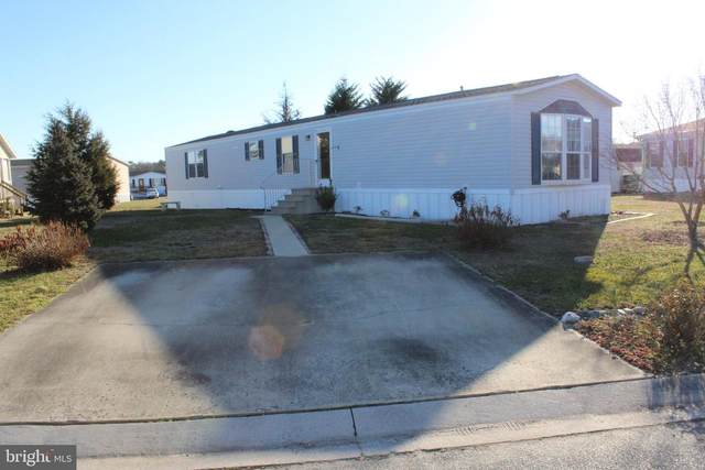 35177 Diva Ct., PITTSVILLE, MD 21850 (#MDWC111340) :: Tessier Real Estate