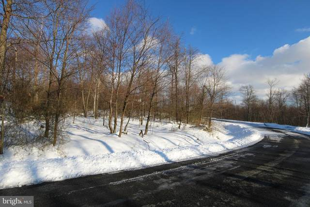 Lot 29 Old Camp Road, MC HENRY, MD 21541 (#MDGA134302) :: AJ Team Realty