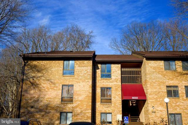 6033 Majors Lane 5D5, COLUMBIA, MD 21045 (#MDHW289838) :: Arlington Realty, Inc.