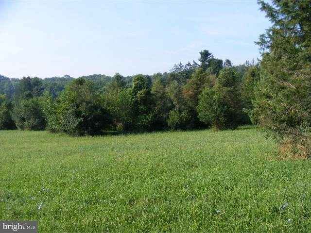 Lot 0 White Oak Lane, LEESPORT, PA 19533 (#PABK372782) :: Ramus Realty Group