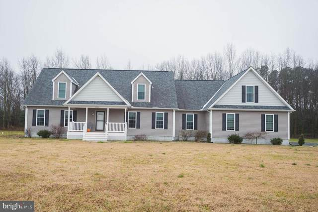8264 Delmar Road, DELMAR, DE 19940 (#DESU176382) :: Bright Home Group