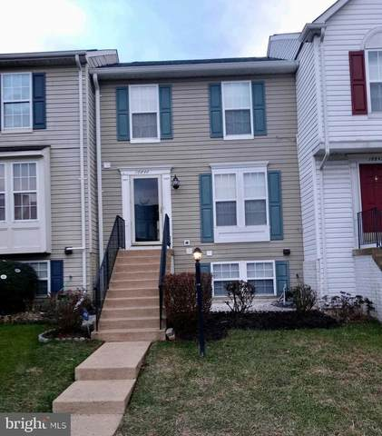 16844 Toms River Loop, DUMFRIES, VA 22026 (#VAPW513576) :: The Dailey Group