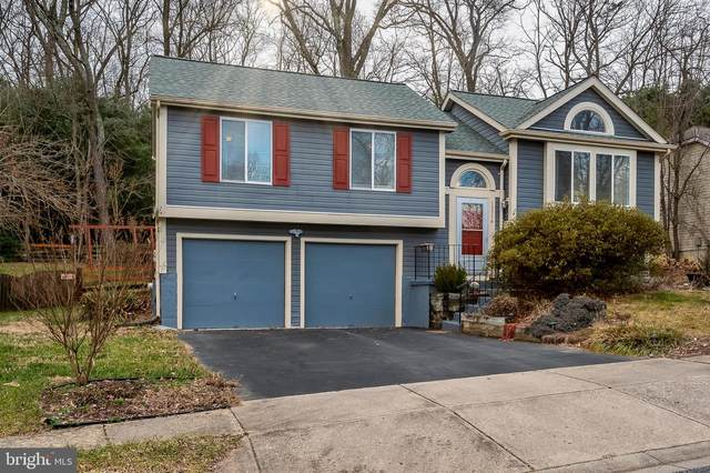 13514 Steeplechase Drive, BOWIE, MD 20715 (#MDPG594792) :: Talbot Greenya Group