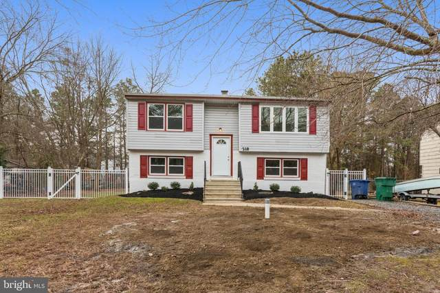 218 Haddon Road, BROWNS MILLS, NJ 08015 (#NJBL390268) :: Holloway Real Estate Group