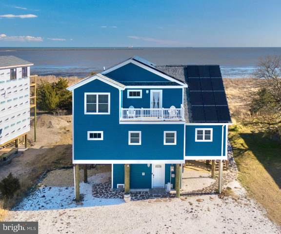 135 Beach Plum Drive, MILFORD, DE 19963 (#DESU176404) :: Atlantic Shores Sotheby's International Realty