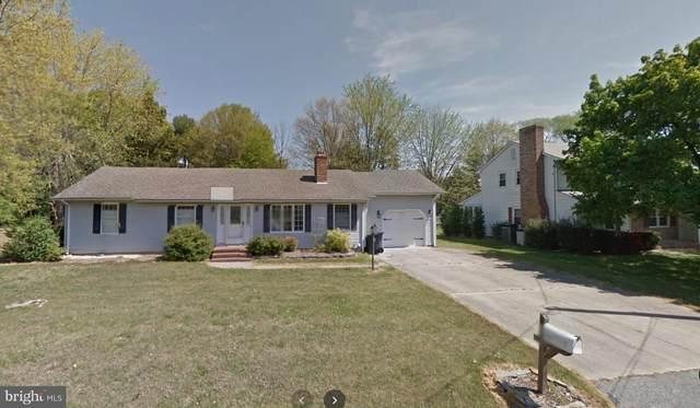 507 Caulk Road, MILFORD, DE 19963 (#DESU176412) :: Ramus Realty Group