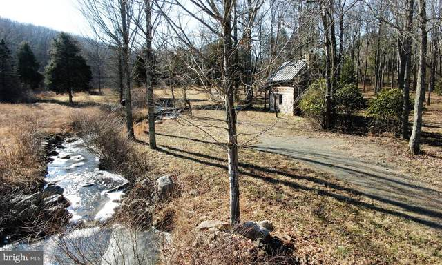 12183 Trout Run Rd, WARDENSVILLE, WV 26851 (#WVHD106580) :: AJ Team Realty