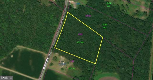 3.72 Acres Adamsville Road, GREENWOOD, DE 19950 (#DESU176460) :: Barrows and Associates