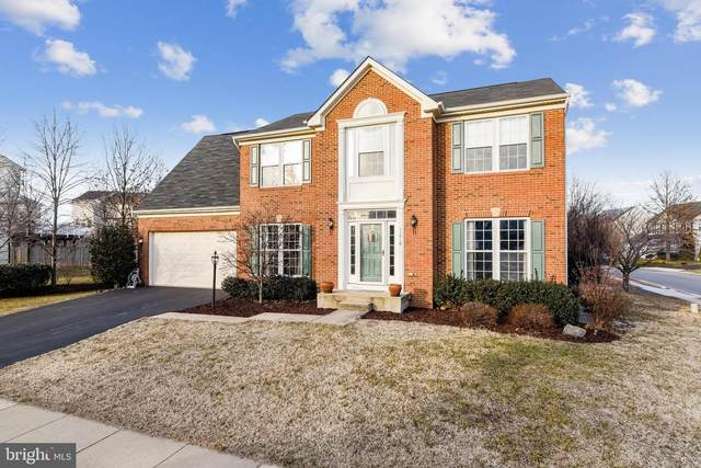 41910 Restful Terrace, ALDIE, VA 20105 (#VALO429628) :: Pearson Smith Realty