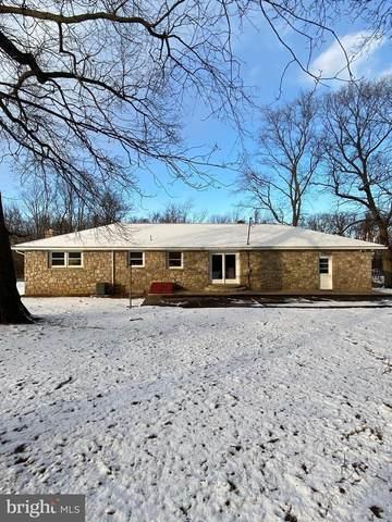 932 Park Road, BLANDON, PA 19510 (#PABK372906) :: Bob Lucido Team of Keller Williams Integrity