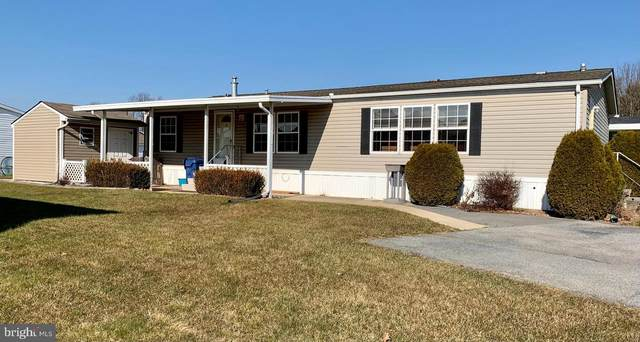 557 Holly Drive, NEW PROVIDENCE, PA 17560 (#PALA176590) :: LoCoMusings