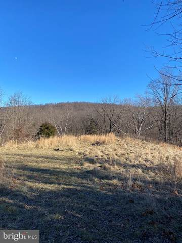 Lot 29 Eagle Landing, HARPERS FERRY, WV 25425 (#WVJF141296) :: The MD Home Team