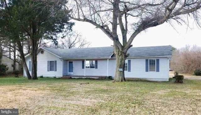 106 Webb Avenue, LAUREL, DE 19956 (#DESU176644) :: Linda Dale Real Estate Experts