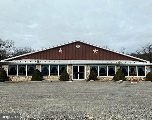 7836 S Susquehanna Trail, PORT TREVORTON, PA 17864 (#PASY100266) :: The Joy Daniels Real Estate Group
