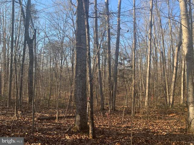 Lot 21 Rillhurst Dr, CULPEPER, VA 22701 (#VACU143506) :: Bruce & Tanya and Associates