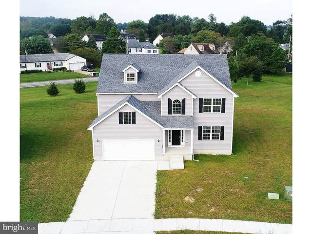 127 Pond Drive, MILTON, DE 19968 (#DESU176700) :: Atlantic Shores Sotheby's International Realty