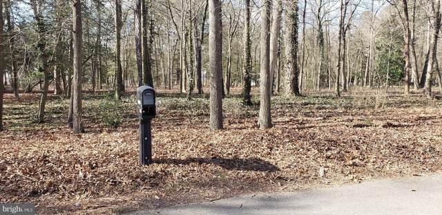 0 Meadow Branch Drive, LAUREL, DE 19956 (#DESU176734) :: The Matt Lenza Real Estate Team