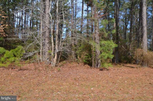 Lot 343 North Glebe Road, MONTROSS, VA 22520 (#VAWE117750) :: Lee Tessier Team