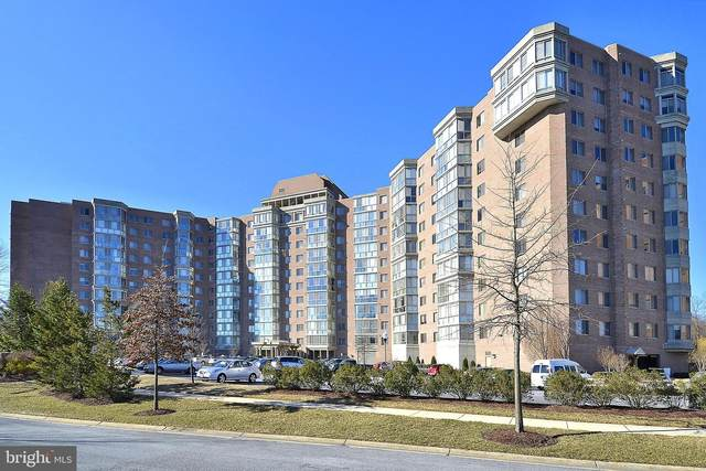 3200 N Leisure World Boulevard #305, SILVER SPRING, MD 20906 (#MDMC743164) :: Dart Homes
