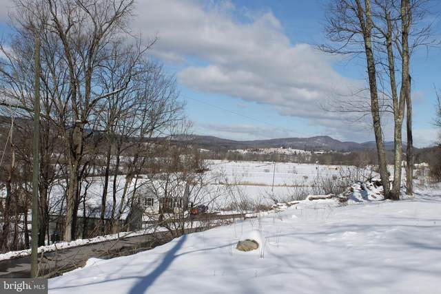 Lot 1A Hummingbird Lane, CAPON BRIDGE, WV 26711 (#WVHS115246) :: SURE Sales Group