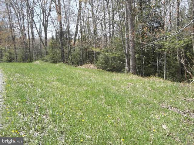 Lot 10 Yough View Drive, OAKLAND, MD 21550 (#MDGA134392) :: ExecuHome Realty