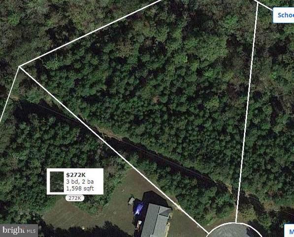 Palmomino Drive, MINERAL, VA 23117 (#VALA122648) :: Jim Bass Group of Real Estate Teams, LLC