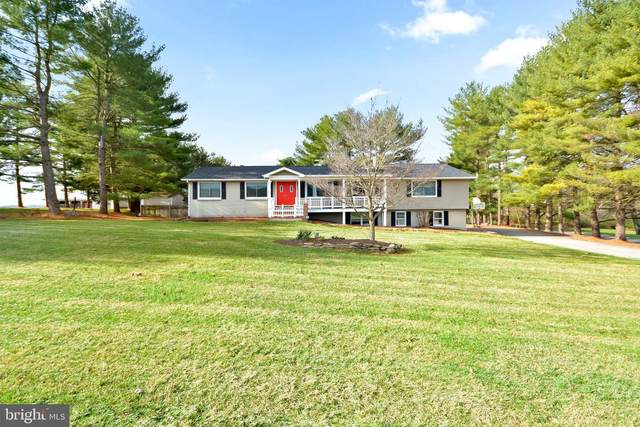 8106 Pete Wiles Road, MIDDLETOWN, MD 21769 (#MDFR277352) :: Colgan Real Estate