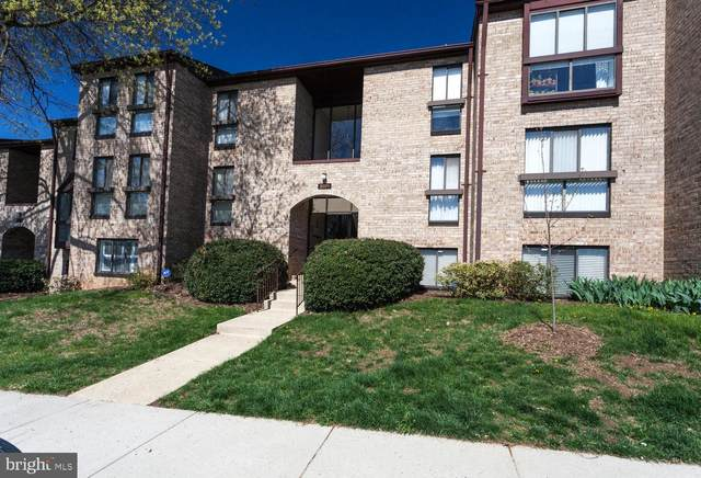 2071 Royal Fern Court 2B, RESTON, VA 20191 (#VAFX1179498) :: SURE Sales Group