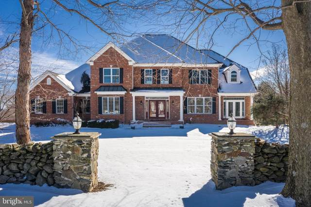 17631 Artists View Court, ROUND HILL, VA 20141 (#VALO430306) :: Peter Knapp Realty Group