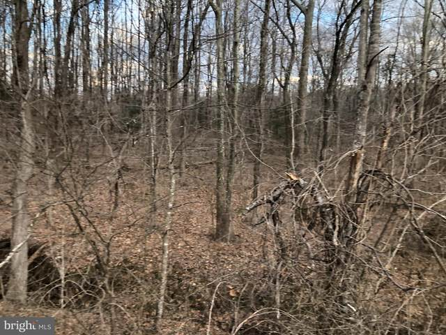 Lot 3 Alum Springs, RIXEYVILLE, VA 22737 (#VACU143584) :: AJ Team Realty