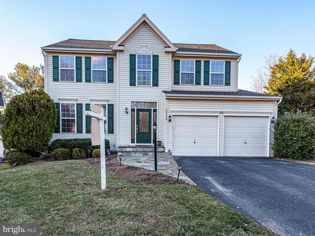 46790 Snow Hill Way, STERLING, VA 20165 (#VALO430318) :: The Vashist Group
